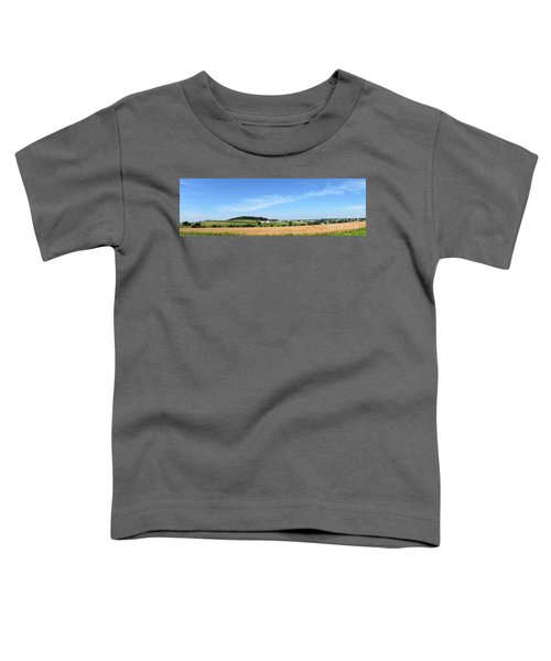 Holmes County Ohio Toddler T-Shirt