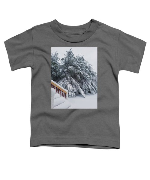 Home For The Blizzard Toddler T-Shirt