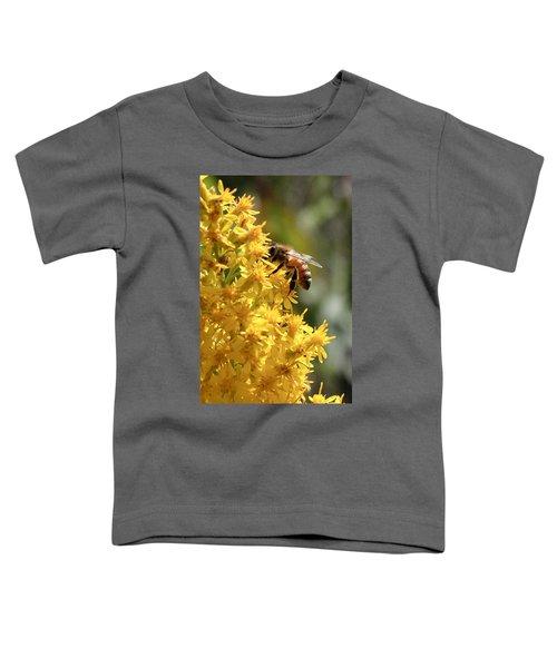 Honeybee On Showy Goldenrod Toddler T-Shirt