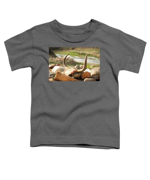 Horn And Valley Tibet Yantra.lv Toddler T-Shirt