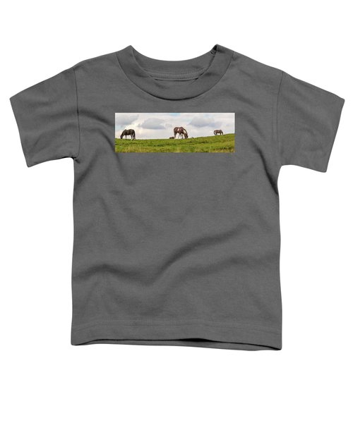 Horses And Clouds Toddler T-Shirt