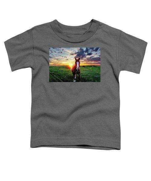 Horses At Sunset Toddler T-Shirt
