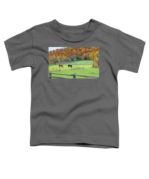 Horses Contentedly Grazing In Fall Pasture Toddler T-Shirt