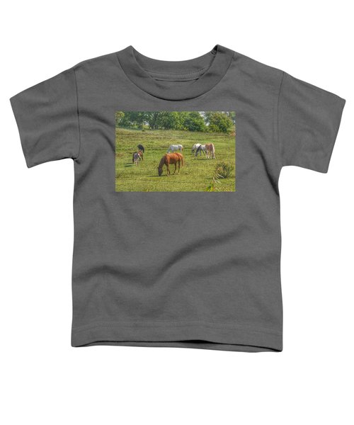 1003 - Horses In A Pasture I Toddler T-Shirt