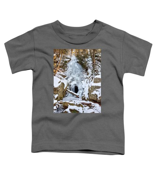 Horseshoe Mine Toddler T-Shirt