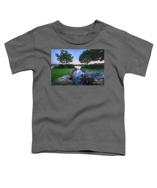 Hot Spring Water Flow Toddler T-Shirt