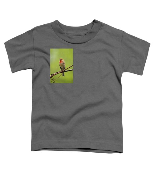 House Finch In The Rain Toddler T-Shirt