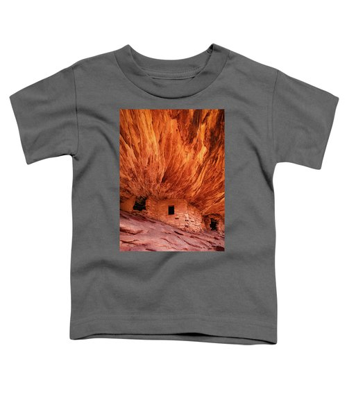 House On Fire Toddler T-Shirt