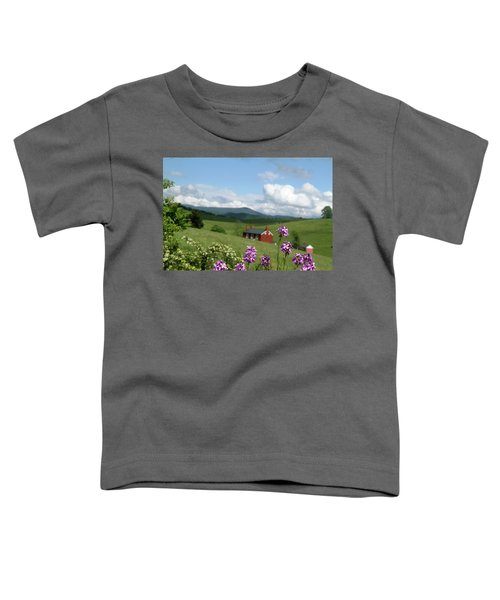 House On Hill In Lexington Toddler T-Shirt
