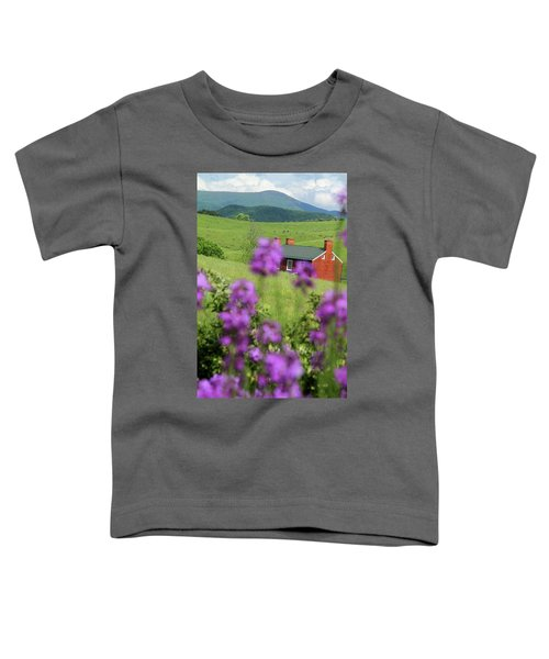 House On Virginia's Hills Toddler T-Shirt