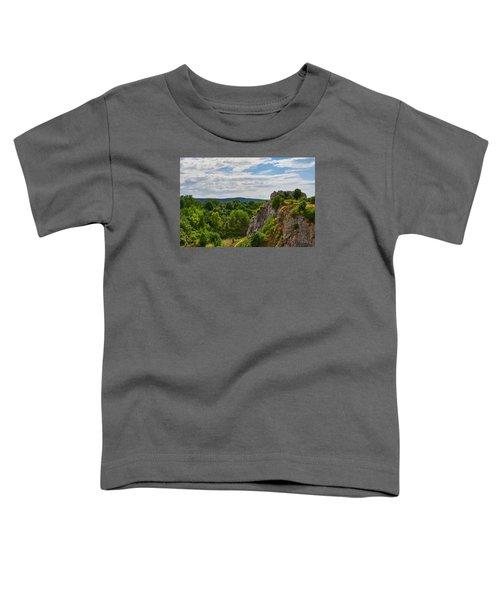 Hug A Rock Toddler T-Shirt