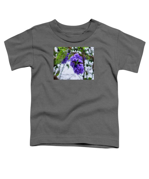 Hummingbird In A Jacaranda Tree Toddler T-Shirt