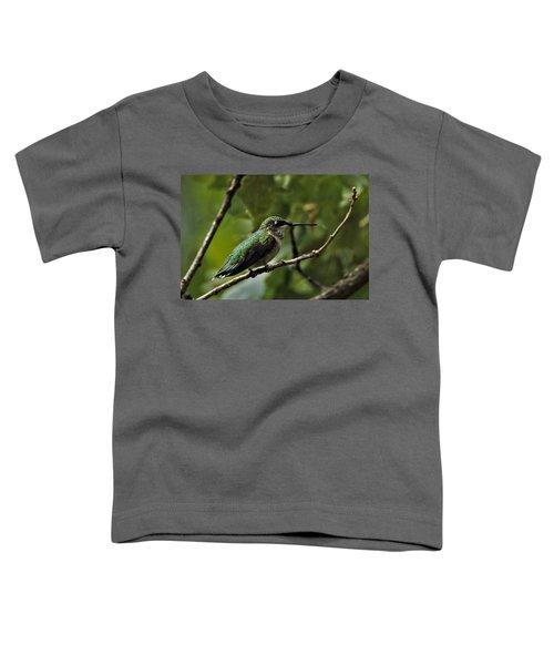 Hummingbird On Branch Toddler T-Shirt