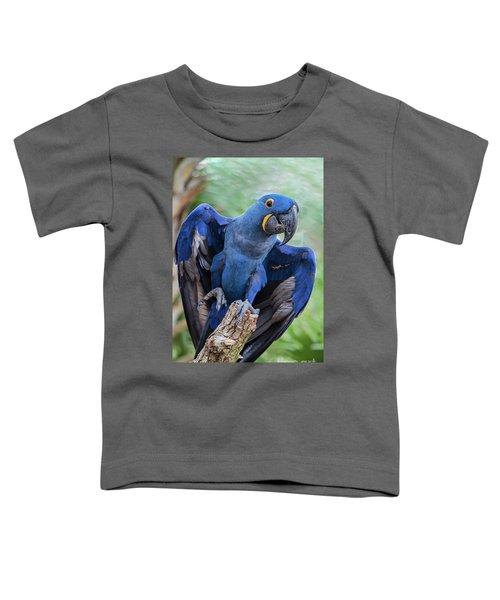Hyacinth Macaw Toddler T-Shirt