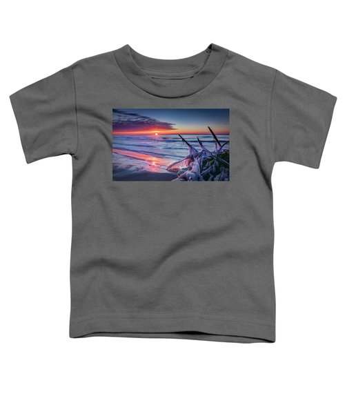 Ice Age Sunrise 1 Toddler T-Shirt