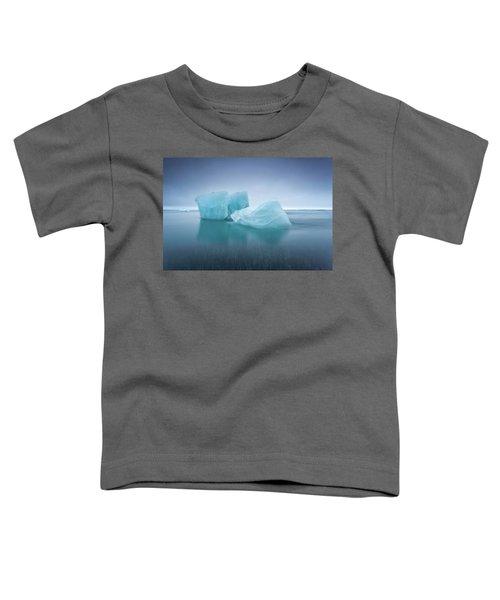 Icebergs Toddler T-Shirt