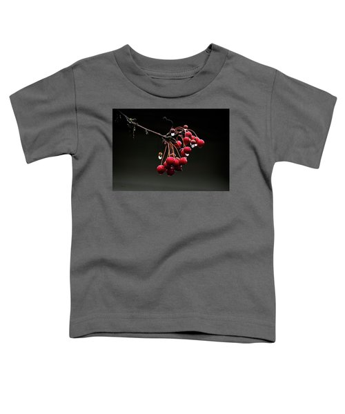 Iced Crab Apples Toddler T-Shirt