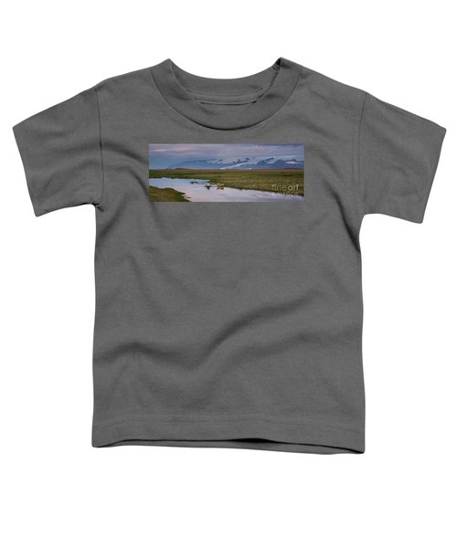 Iceland Sheep Reflections Panorama  Toddler T-Shirt