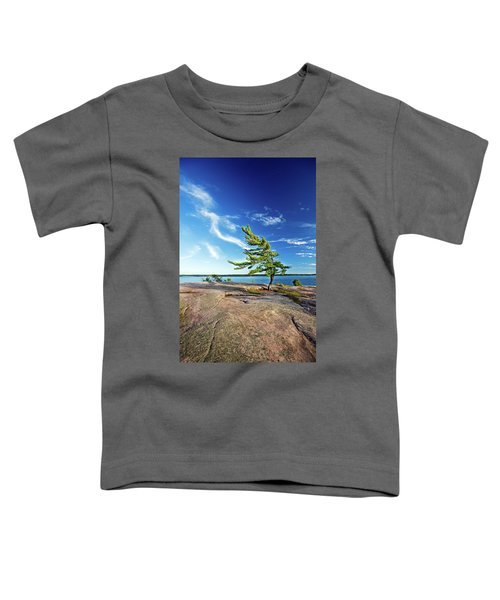 Iconic Windswept Pine Toddler T-Shirt