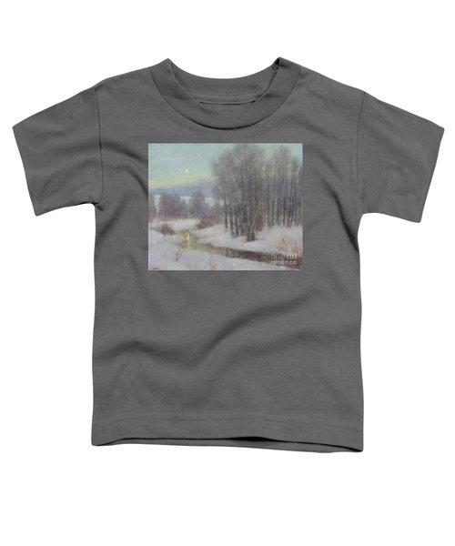 Icy Evening Toddler T-Shirt