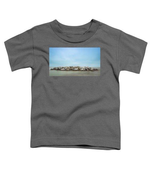Icy Morning Toddler T-Shirt