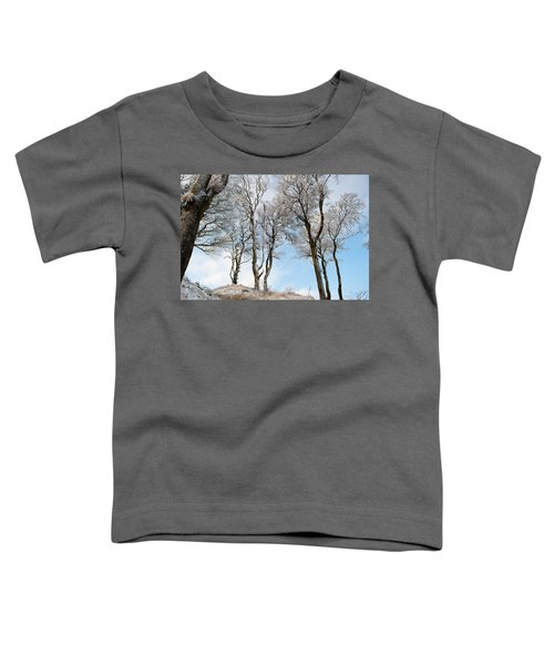 Icy Trees Toddler T-Shirt