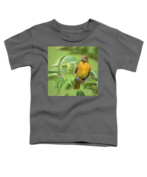 Immature Baltimore Oriole  Toddler T-Shirt by Ricky L Jones