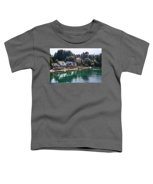 Rustic Museum In The Argentine Patagonia Toddler T-Shirt