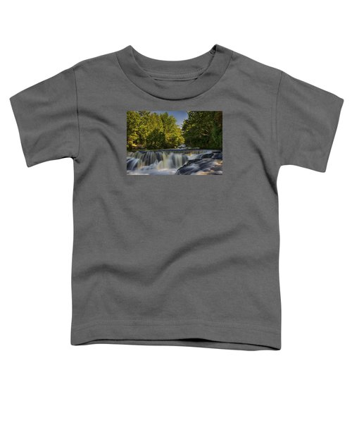 In The Middle Of The Middle Branch Toddler T-Shirt