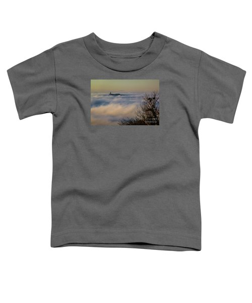 In The Mist 1 Toddler T-Shirt