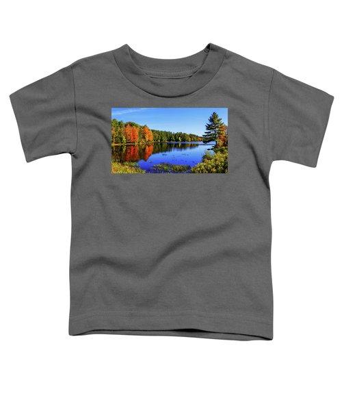 Incredible Toddler T-Shirt