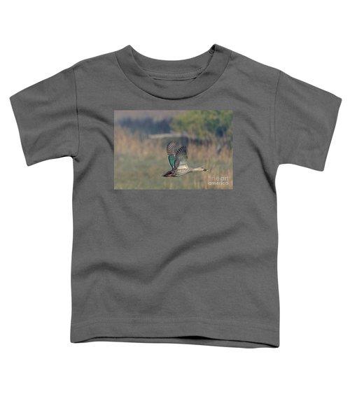 Indian Spot-billed Duck 03 Toddler T-Shirt