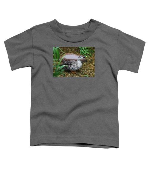 Indian Spot-billed Duck Toddler T-Shirt