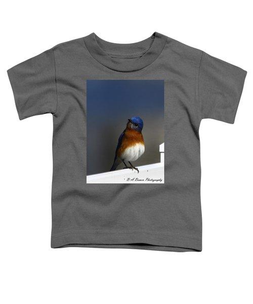 Inquisitive Bluebird Toddler T-Shirt