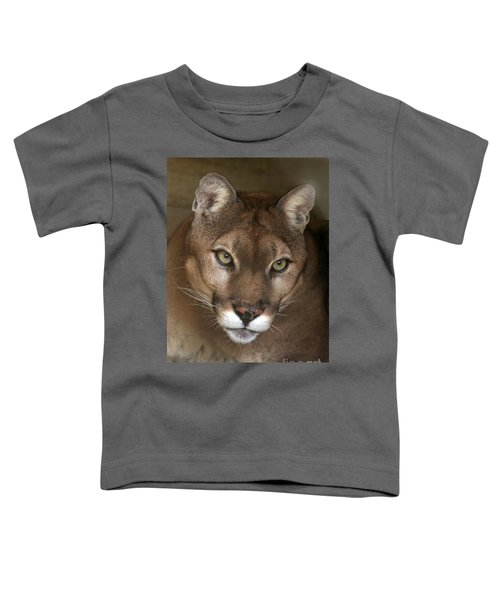 Intense Cougar Toddler T-Shirt