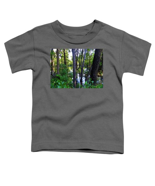 Interior Lake Chale Island Toddler T-Shirt