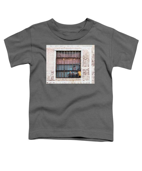 Inventory Time Toddler T-Shirt