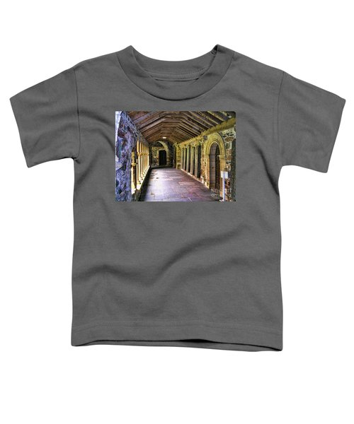 Arched Invitation Passageway Toddler T-Shirt