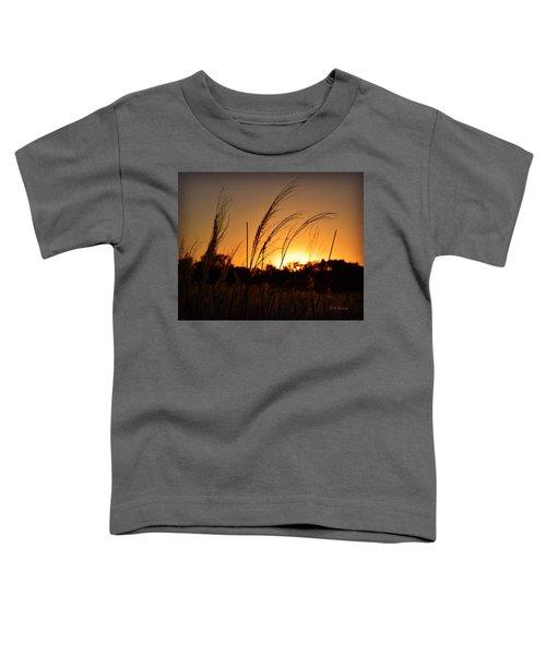 Iowa Prairie Sunset Toddler T-Shirt