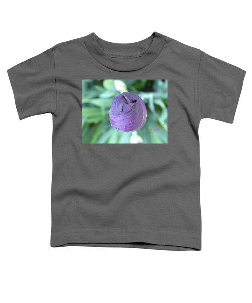 Iris After The Rain Vi Toddler T-Shirt