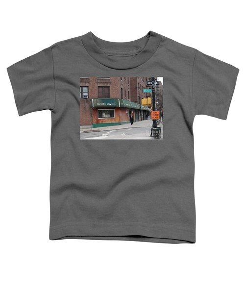 Irish Eyes Toddler T-Shirt by Cole Thompson
