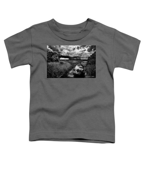 Isolated Shower - Bw Toddler T-Shirt