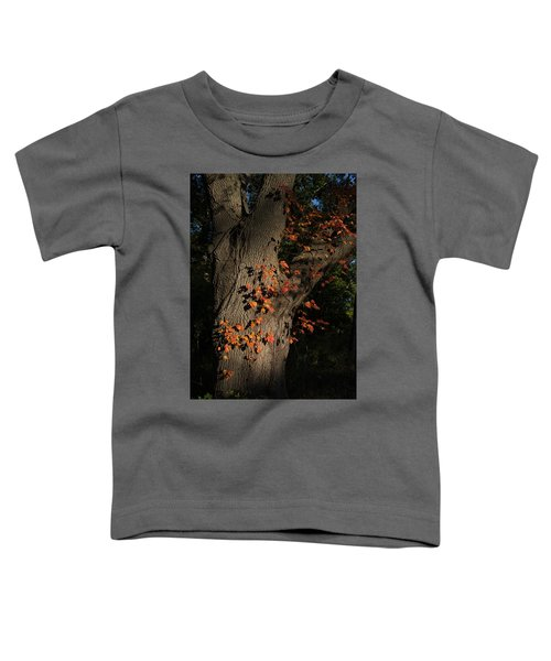 Ivy In The Fall Toddler T-Shirt