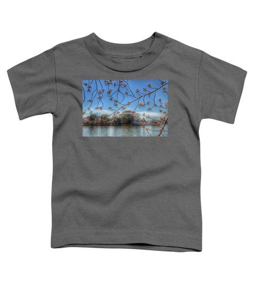 Jefferson Memorial - Cherry Blossoms Toddler T-Shirt by Marianna Mills