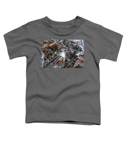 Jewel Of Winter 1 Toddler T-Shirt