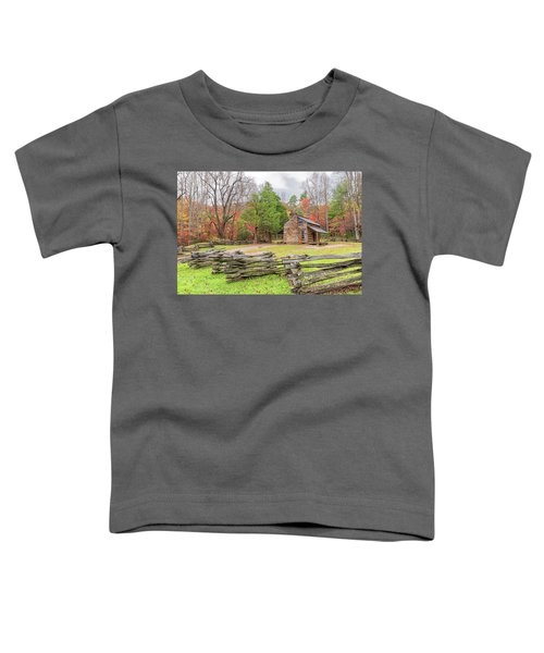 John Oliver Cabin Toddler T-Shirt
