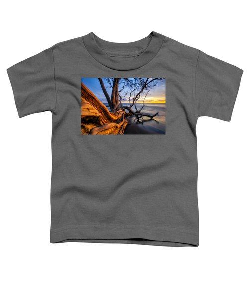 Kailiili Sunset Toddler T-Shirt