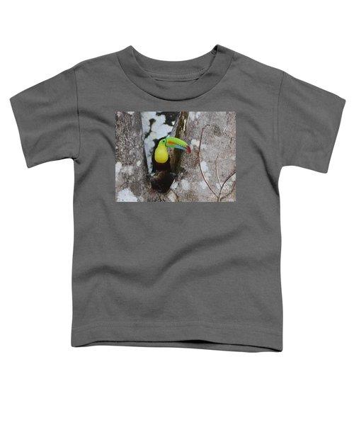 Keel-billed Toucan #2 Toddler T-Shirt