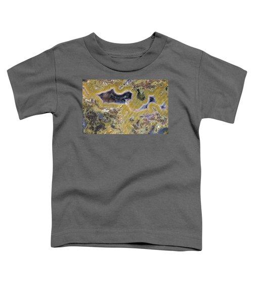 Kentucky Agate Toddler T-Shirt