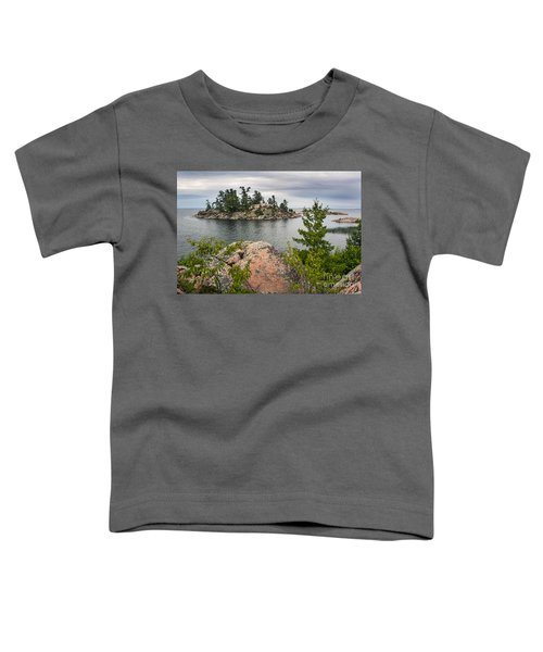 Killarney-island-pink-4513 Toddler T-Shirt